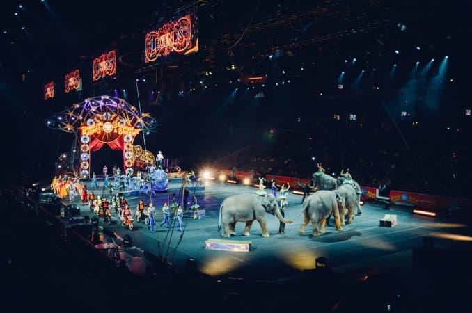 Młodzież przeciwko cyrkom ze zwierzętami w Radomsku