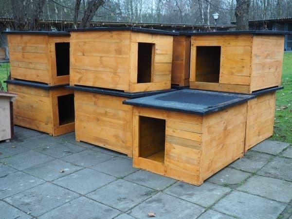 Nowe budy w Schronisku dla Bezdomnych Zwierząt w Radomsku