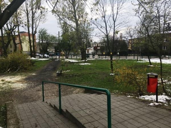 Parki zmienią wygląd