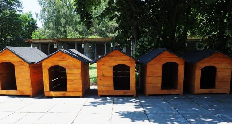 Psie domki trafiły do Schroniska dla Bezdomnych Zwierząt