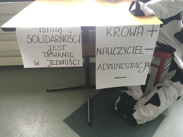 Strajk nauczycieli – co z maturami?