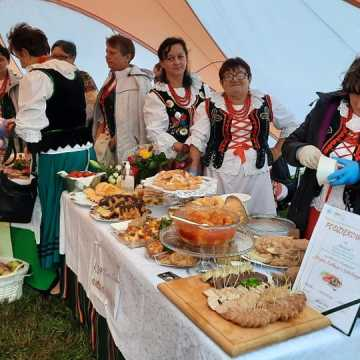 Piknik rodzinny województwa łódzkiego w Wielgomłynach
