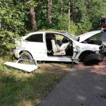 Piotrków Tryb.: pijany 17-latek wjechał w drzewo. Wiózł 13-letniego kolegę