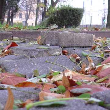 """""""W Temacie-EXTRA"""": Pierwsze urodziny chodnikowej dziury w centrum Radomska"""