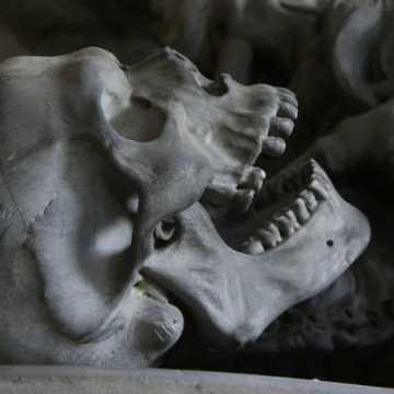 Ludzkie kości na budowie na ul. Łokietka