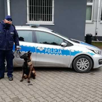 Nowy pies policyjny w szeregach radomszczańskiej komendy