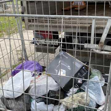 Mieszkańcy Radomska w zamian za elektrośmieci otrzymali sadzonki