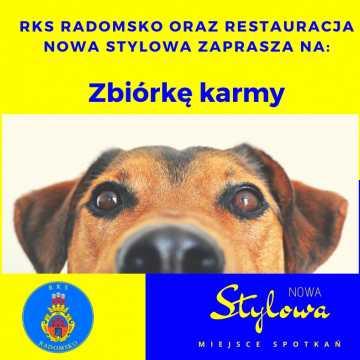 Klub RKS Radomsko organizuje zbiórkę karmy dla zwierząt ze schroniska