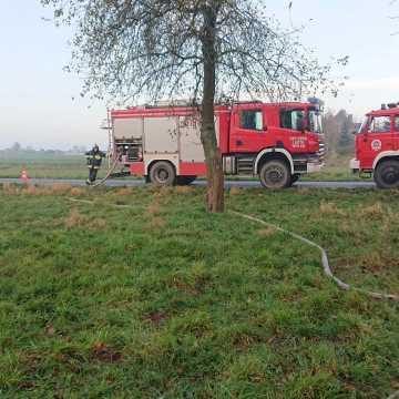 Kolejny pożar w Brudzicach. Tym razem paliły się gałęzie