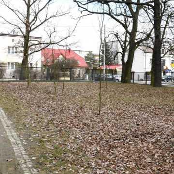 Piotrków Tryb.: Kawiarnia w parku Poniatowskiego?