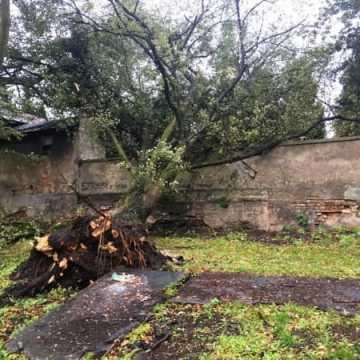 Ranni, połamane drzewa, zamknięty park. Bilans orkanu Ksawery w Radomsku i powiecie