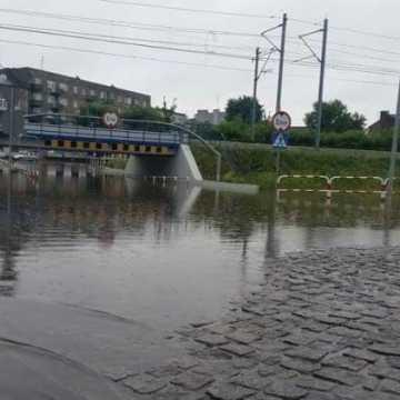 Bez rządowego dofinansowania dla renaturalizacji rzeki Radomki i rozbudowy strefy w Radomsku