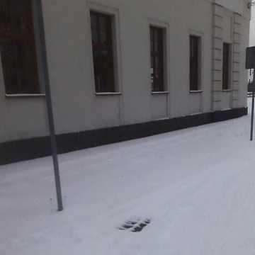 Śnieżna przeprawa na dworzec PKP w Radomsku