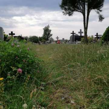 Śmieci i trawa prawie po kolana – wizytówka cmentarza
