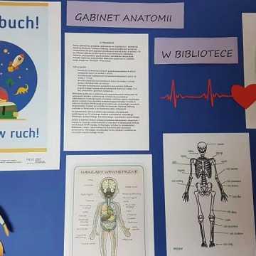 """Warsztaty w bibliotecznej filii: """"Gabinet anatomii w bibliotece"""""""