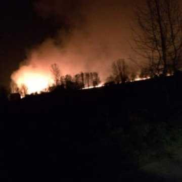 Spłonęło 10 ha traw