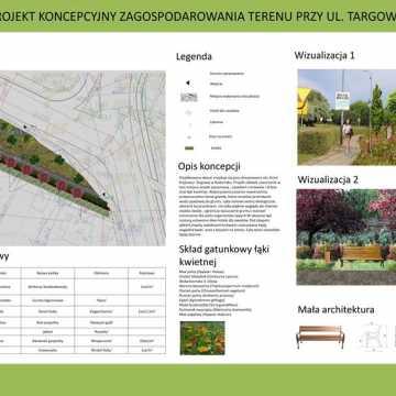 Studenci podpowiadają, jak zagospodarować zieleń w Radomsku
