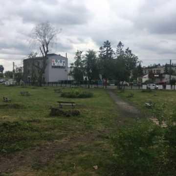 Przetargi na budowę basenu, rewitalizację parku i remont ul. Reymonta