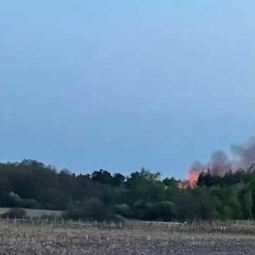Trwa akcja gaszenia pożaru lasu w okolicy Suchej Wsi