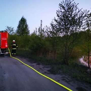 Pożar suchej trawy w Kamieńsku