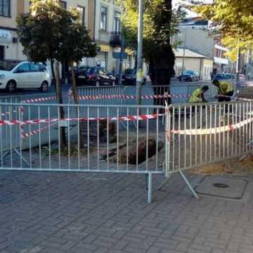 PGK wymienia sieć wodociągową w centrum miasta