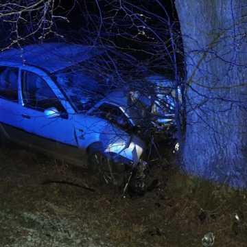 Gm. Wielgomłyny: kierująca vw golfem uderzyła w drzewo. Ranna została 15-latka