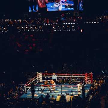 Charakterystyka rankingu bokserskiego WBC