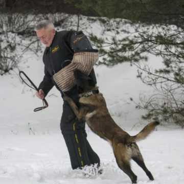 """""""Omo"""" – nowy psi funkcjonariusz w Radomsku"""