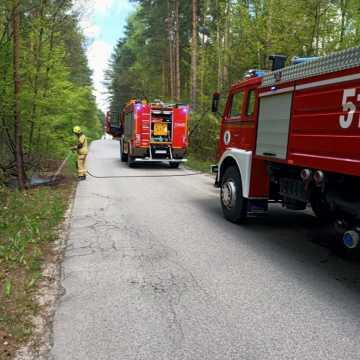 Pożar poszycia leśnego na drodze między Siódemką a Podjezioro