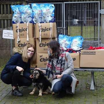 Schronisko dla Bezdomnych Zwierząt w Radomsku otrzymało świąteczny prezent