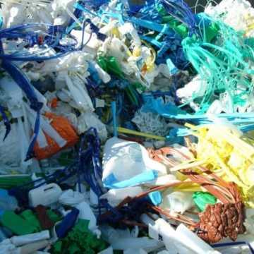 Kto odbierze nasze śmieci?