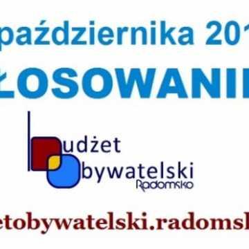 Budżet Obywatelski w Radomsku. Ruszyło głosowanie