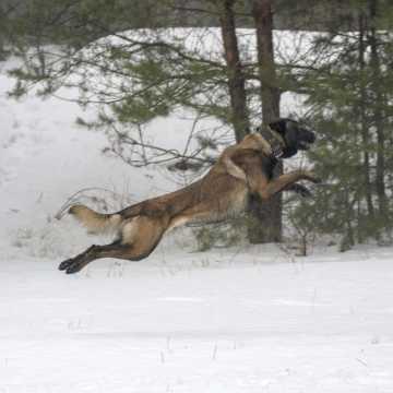 Omo rozpoczął służbę w radomszczańskiej Policji