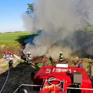 Pożar wysypiska śmieci w Dmeninie