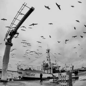 Foto Pozytyw nad morzem