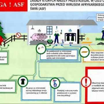 Minister apeluje do hodowców w sprawie ASF