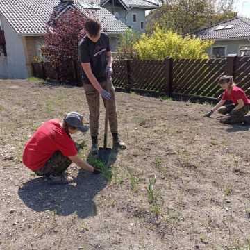 Harcerska łąka kwietna przy Glinianej w Radomsku nabrała kształtów