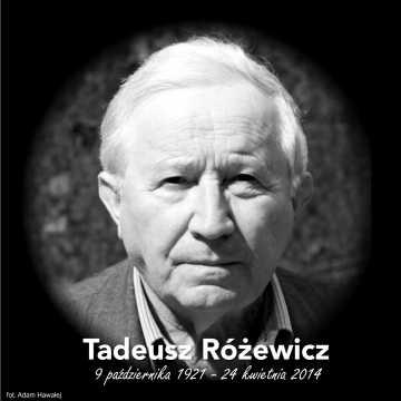 Mija 7. rocznica śmierci Tadeusza Różewicza