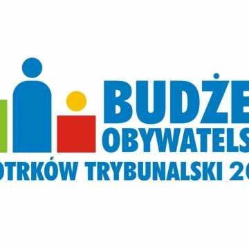 Piotrków Tryb.: Budżet Obywatelski 2021. Wystartowało głosowanie