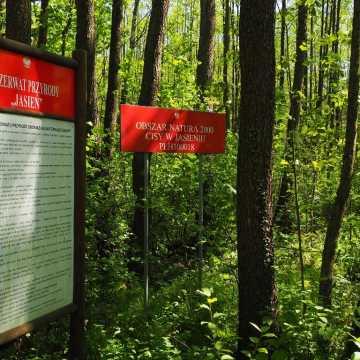 Era Travel na weekend: w poszukiwaniu szmaragdów i diamentów ziemi radomszczańskiej