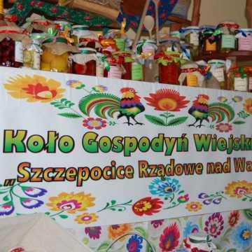 Piknik rodzinny w Szczepocicach