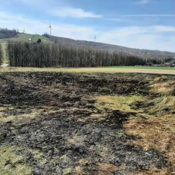 Pęknięta rura oraz pożar traw. Pracowity dzień strażaków z Kamieńska