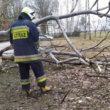 Strażacy-ochotnicy będą zarabiać więcej. Jest decyzja Rady Miejskiej w Radomsku