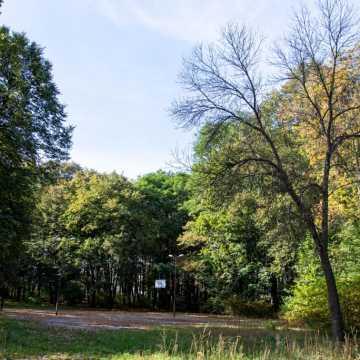 Bełchatów: Rozpoczęły się prace w parku 1000-lecia