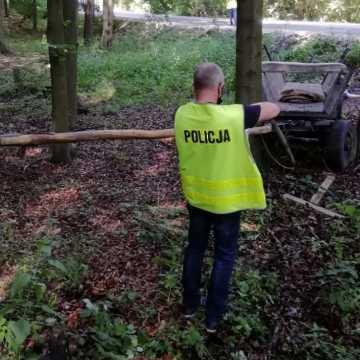 Śmiertelny wypadek w gminie Przedbórz. Nie żyje 66-letni woźnica