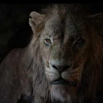 """Murowany hit. """"Król lew"""" w kinie MDK"""