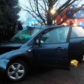 Wypadek w m. Borowe. Ford uderzył w posesję