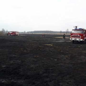 Spłonęły łąki i nieużytki rolne
