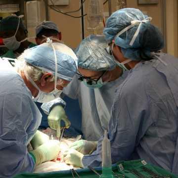 Dziś Dzień Transplantacji