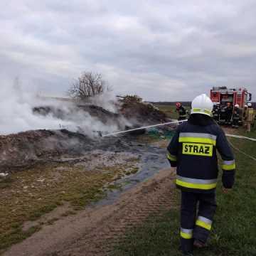 Zapaliło się dzikie wysypisko śmieci w gminie Kodrąb